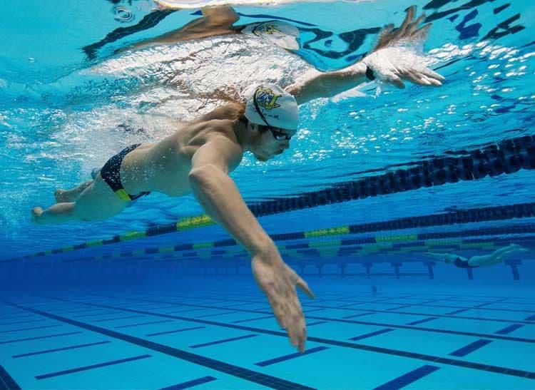 Thực hiện động tác tay trong bơi trườn sấp